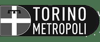 MapsGroup-clienti-Città_metropolitana_di_Torino_grey