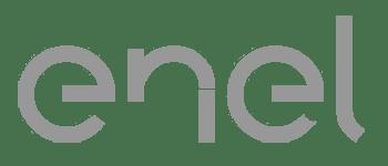 MapsGroup-clienti-Enel__grey