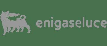 MapsGroup-clienti-EniGaseLuce_grey