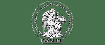 mapsgroup_Ospedale_Pediatrico_Gaslini_grey