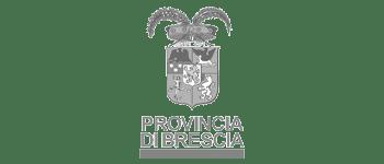 mapsgroup_clients_provincia_brescia